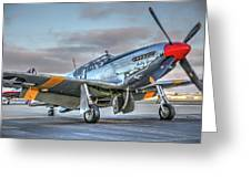 Betty Jane P51d Mustang At Livermore Greeting Card