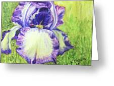 Betty's Iris Greeting Card
