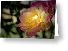 Bettys Rose Greeting Card