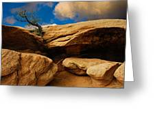 Between A Rock And A Hard Place Greeting Card