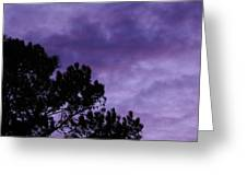 Beyond Dusk In The South Greeting Card