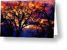 Beyond The Cottonwoods Greeting Card