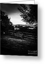 Beyond The Fence Greeting Card