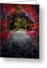 Beyond The Red Leaves Greeting Card