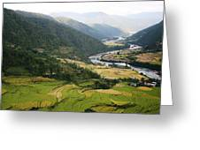 Bhutan Rice Fields Greeting Card