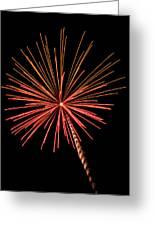 Bi-color Fireworks 2 Greeting Card