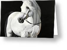 Bianco Su Nero Greeting Card