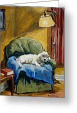 Bichon Frise On Chair Greeting Card by Thor Wickstrom