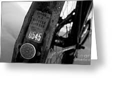 Bicycle License Greeting Card