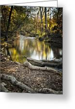 Bidwell Park Reflection Greeting Card