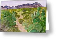 Big Bend Landscape Greeting Card
