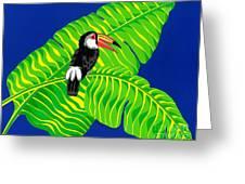 Big Billed Bird Greeting Card
