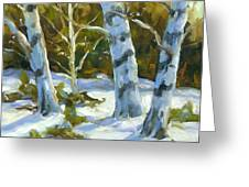 Big Birches In Winter Greeting Card