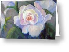 Big Blushing Rose Greeting Card