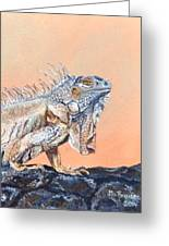 Big Bubba Iguana Greeting Card