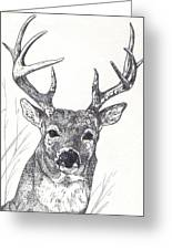 Big Buck Greeting Card