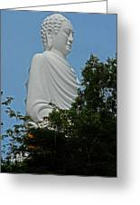 Big Buddha 5 Greeting Card