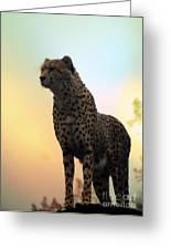Big Cats 104 Greeting Card