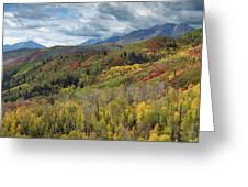 Big Cottonwood Canyon Fall Colors Greeting Card