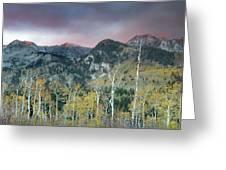 Big Cottonwood Canyon Sunrise Greeting Card