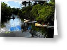Big Cypress Outing Greeting Card