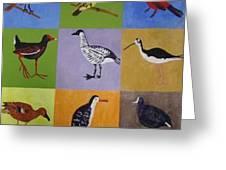 Big Island Endangered Birds Greeting Card
