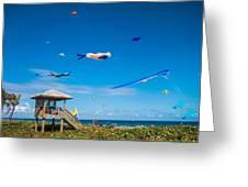 Big Kites Delray Beach Greeting Card
