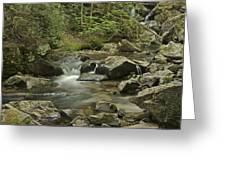 Big Pup Falls 2 Greeting Card