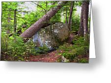 Big Rock Greeting Card