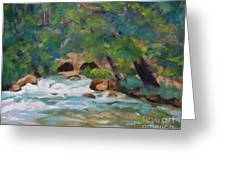 Big Spring On The Current River Greeting Card