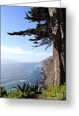 Big Sur Coastline Greeting Card by Linda Woods