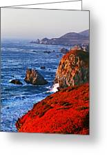 Big Sur Greeting Card