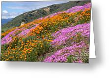 Big Sur Spring Greeting Card