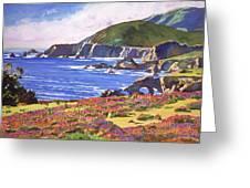 Big Sur Wildflowers - Plein Air Greeting Card