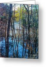 Big Thicket Water Reflection Greeting Card