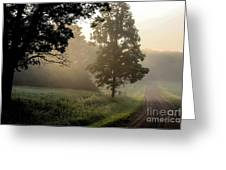 Big Valley Mist  Greeting Card