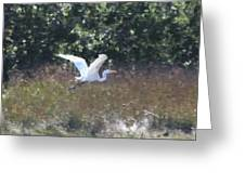Big White Bird Flying Away Greeting Card