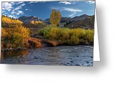Big Wood River Color Greeting Card