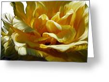 Big Yellow Rose Greeting Card