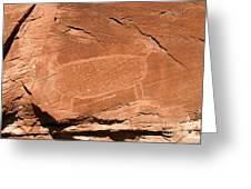Bighorn Greeting Card