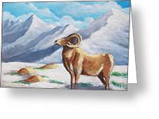 Bighorn Kam Greeting Card