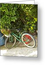 Bike In Maupiti Greeting Card