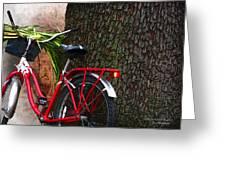 Bike Resting Greeting Card