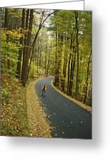 Biker On Road Amidst Fall Foliage Greeting Card
