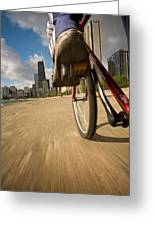 Biking Chicagos Lakefront Greeting Card