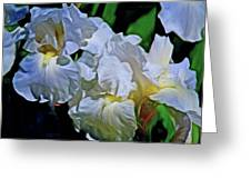 Billowing White Irises Greeting Card
