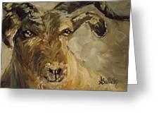 Billy Goat Gruff Greeting Card
