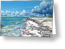 Bimini Breeze Greeting Card by Danielle  Perry