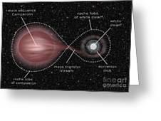 Binary Star System Greeting Card