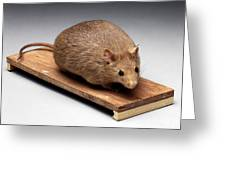 Bioengineered Obese Mouse, 1998 Greeting Card